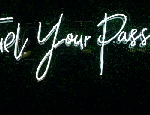 Success Starts With Passion: How to Build a Business Doing What You Love